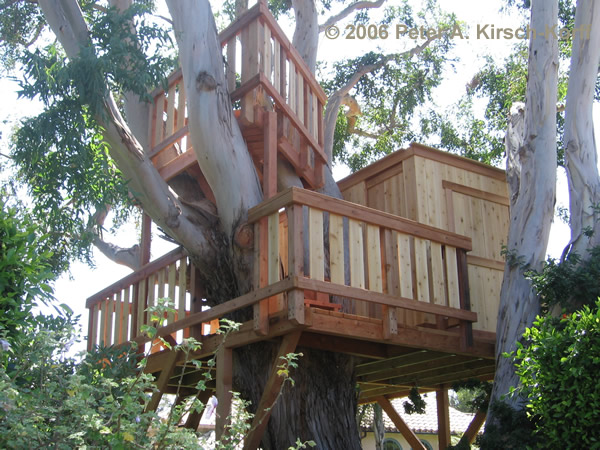 Wood Treehouse Multiple Levels With Club House Photo Malibu